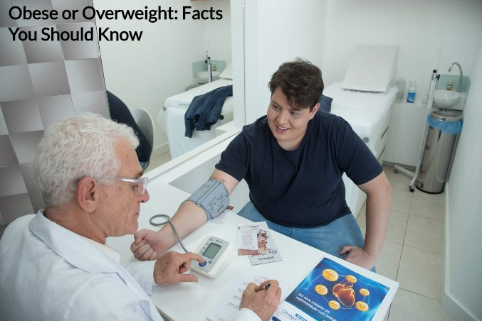 obesity facts - obese or overweight man talking to a doctor
